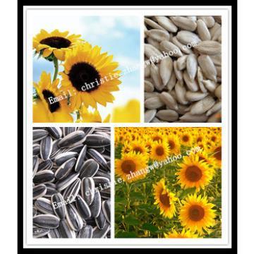 high peeling rate sunflower seed hulling machine
